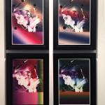 Newton Shots, digtal print /aluminium and laser cut, 2013