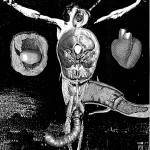 anatomy12, 2002, digital print /canvas, dimensions variable.