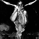 anatomy17, 2002, digital print /canvas, dimensions variable.