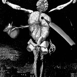 anatomy3, 2002, digital print /canvas, dimensions variable.